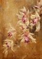 """""""Ветка орхидеи"""""""